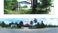 ที่ดินพร้อมสิ่งปลูกสร้างหลุดจำนอง ธ.ธนาคารกรุงไทย นครสวรรค์ บรรพตพิสัย ตาขีด